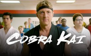 cobra kai 300x184 - Best things in RETRO TV from 2018